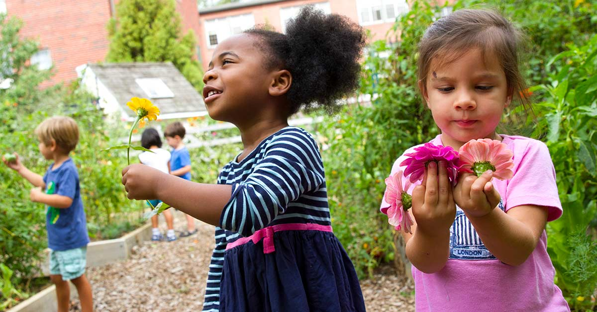 Friends Central School_Nursery Garden